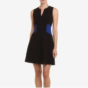 NWT Rebecca Taylor colorblock fit and flare dress